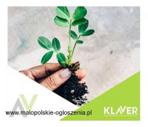 Pielęgnacja sadzonek- praca w Holandii- Lottum od zaraz bez kwarantanny !!