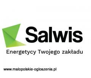 Salwis.pl
